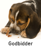 Hundedgodbidder til hund
