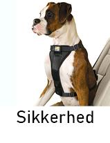 Sikkerhed til hund